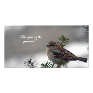 Sparrow, His eye is on the Sparrow! Photo Greeting Card