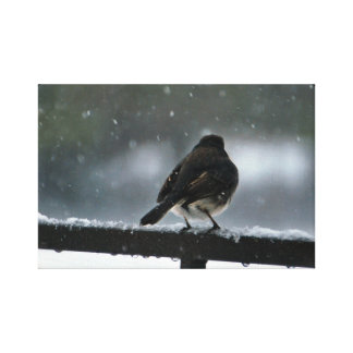Sparrow in the Snow Photo Gallery Wrap Canvas