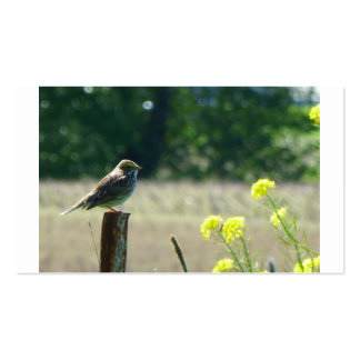 Sparrow on a fence post with flowers business cards
