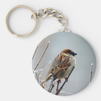 Sparrow on a Tree Branch Key Ring