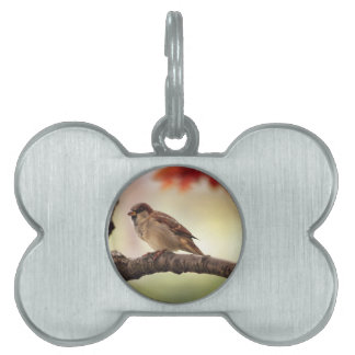 sparrow pet tag