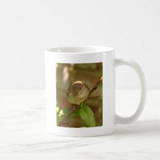 Sparrow Photo Coffee Mug