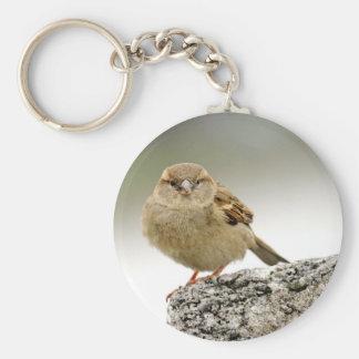 Sparrow portrait basic round button key ring