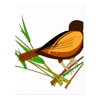 Sparrow Sitting On Branch Postcard