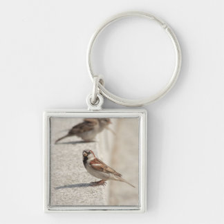 sparrows on the step key ring