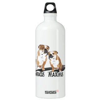 Spartacus Maximus Ice Love Coco SIGG Traveller 1.0L Water Bottle