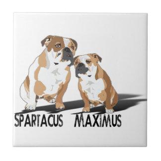 Spartacus Maximus Ice Love Coco Small Square Tile