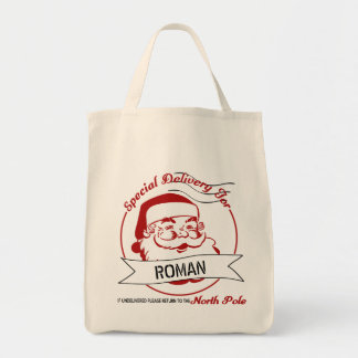 Special Delivery Christmas Tote/ Gift Bag