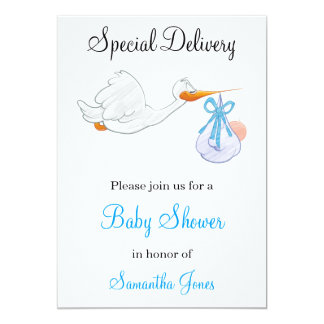 Special Delivery Stork Baby Shower Invitation
