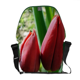Special Design Messenger Bag With Two Red Tulips