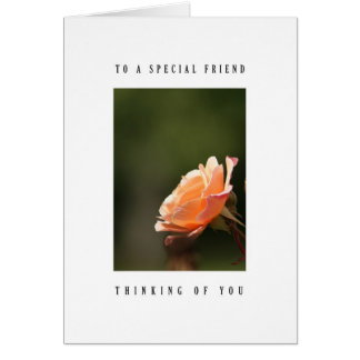 Special friend - tea rose greeting card