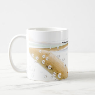 Species: Rush Sedge caddisfly Mugs