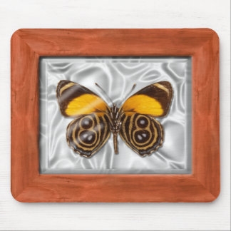 Specimen Box - Butterfly Mouse Pad