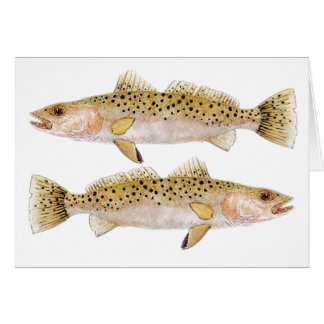 Speckled Sea Trout Card