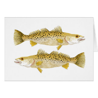 Speckled Seatrout Card