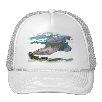 Speckled Trout Feeding Cap