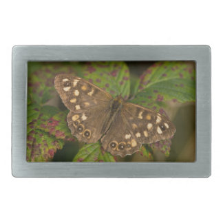 Speckled Wood Butterfly Belt Buckle