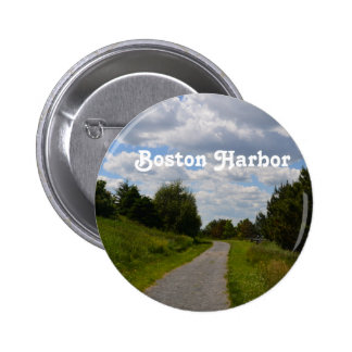 Spectacle Island in Boston Harbor Buttons