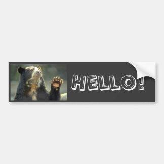 spectacled bear, Hello! Car Bumper Sticker