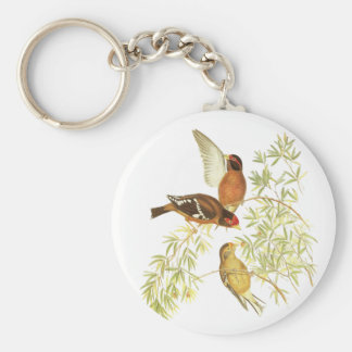 Spectacled Finch Basic Round Button Key Ring