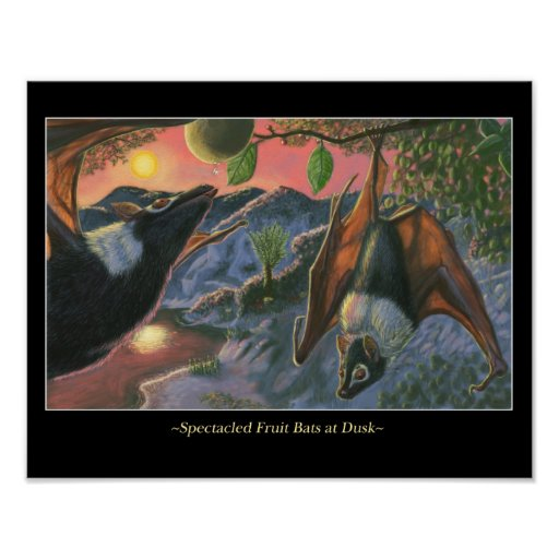 Spectacled Fruit Bats at Dusk Posters