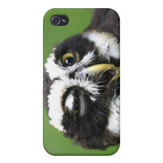 Spectacled Owl (Pulsatrix perspicillata) iPhone 4 Cover