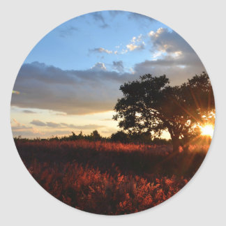 Spectacular African Sunset Classic Round Sticker