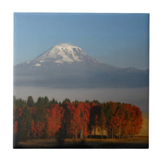 SPECTACULAR FALL COLOR SCENICS SMALL SQUARE TILE