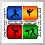 Spectacular Karate