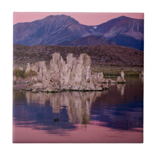 Spectacular Mono Lake In The Shadow Small Square Tile