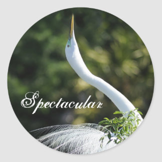 Spectacular Round Sticker