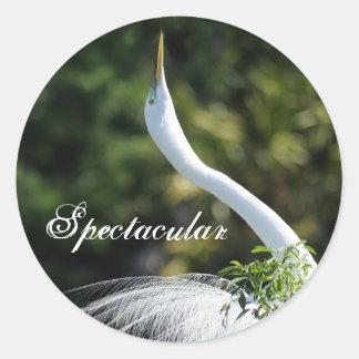 Spectacular Round Sticker