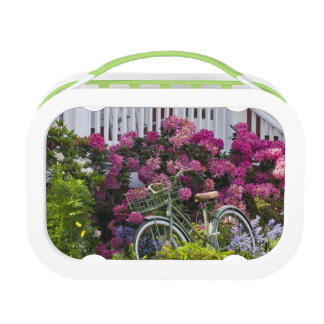 Spectacular spring bloom, whimsical antique lunch box