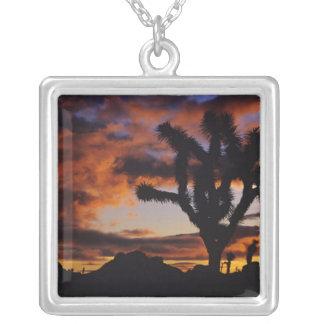 Spectacular Sunrise at Joshua Tree National Square Pendant Necklace
