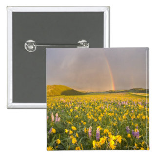 Spectacular wildflower meadow at sunrise in 2 pinback buttons