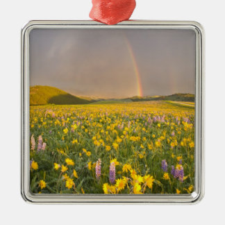 Spectacular wildflower meadow at sunrise in 2 Silver-Colored square decoration