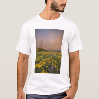 Spectacular wildflower meadow at sunrise in T-Shirt