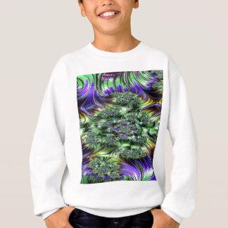 spectroscopic petulance fractal 2 sweatshirt