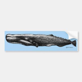 Sperm Whale Bumper Sticker