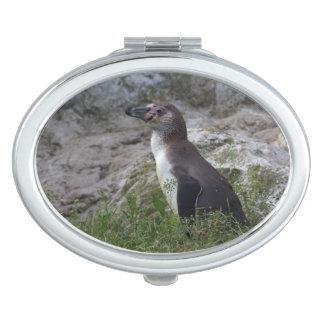 Spheniscus humboldti travel mirror