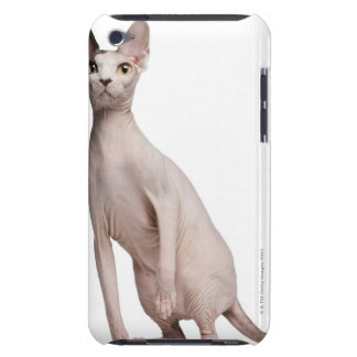 Sphynx (13 months old) barely there iPod case