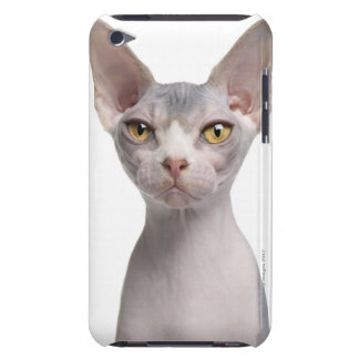 Sphynx (7 months old) iPod touch case