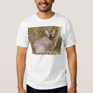 Sphynx Article T-shirts