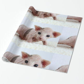 Sphynx kitten.png wrapping paper