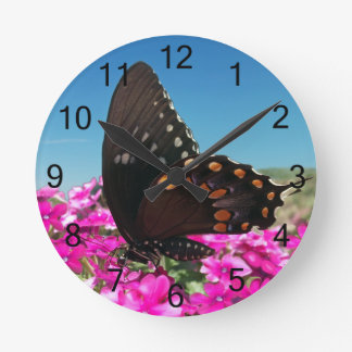 Spicebush Swallowtail Butterfly Clocks