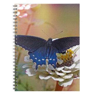 Spicebush Swallowtail Spiral Notebook