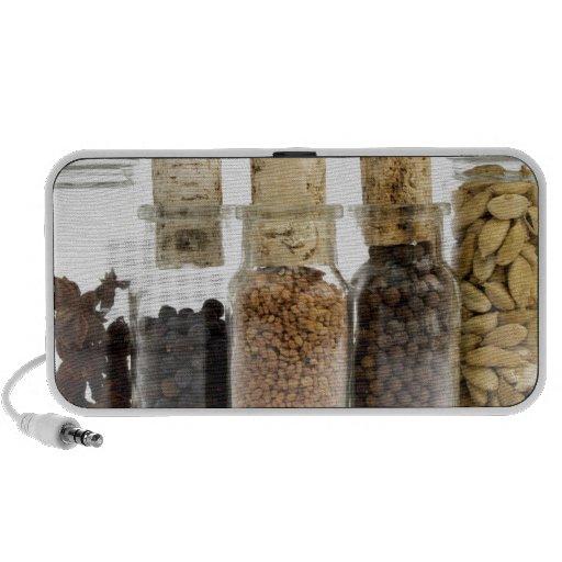 spices speaker
