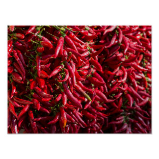 Spicy Red Chili In The Town Of Kalocsa Poster
