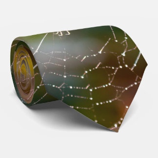 Spider and web photograph men's tie