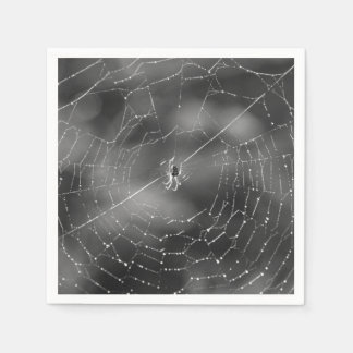 Spider and web photograph napkins disposable napkins